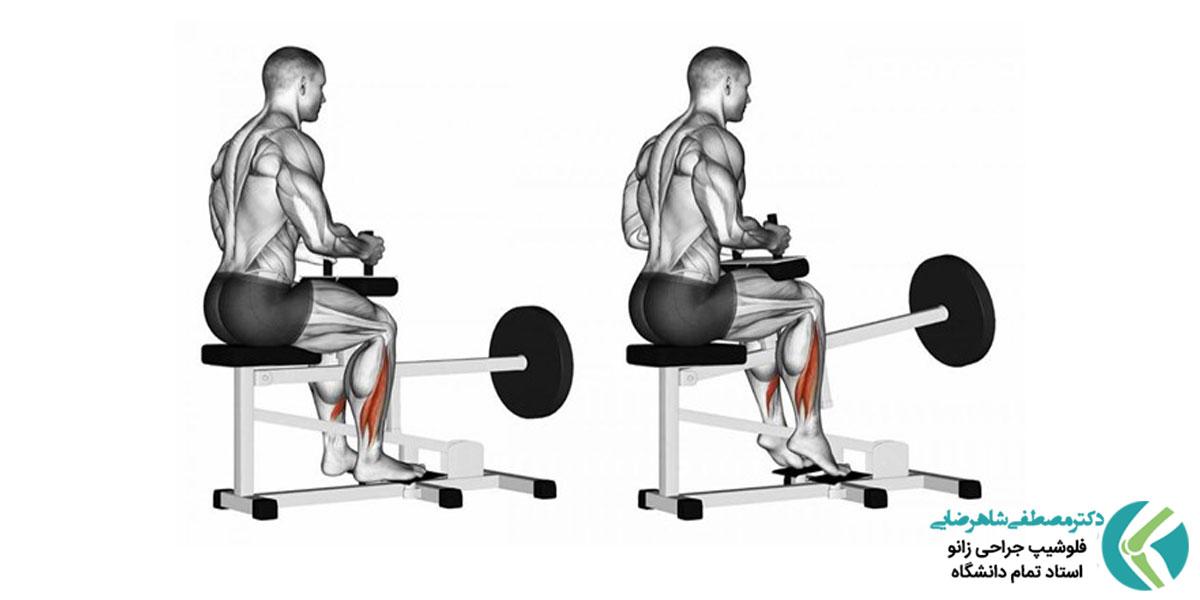 5 تمرین برای تقویت عضلات ساق پا در باشگاه